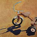 Vintage Tricycle by Rhonda Alexander