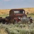 Vintage Truck In Field by Lorri F