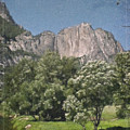 Vintage Yosemite by Teresa Mucha