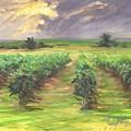 Vinyard by Margaret Aycock