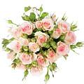 Bouquet Of Garden Roses by Anastasy Yarmolovich