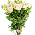 Garden Roses Bouquet by Anastasy Yarmolovich