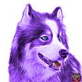 Violet Modern Siberian Husky Dog Art - 6024 - Wb by James Ahn