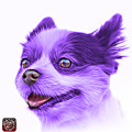 Violet Pomeranian Dog Art 4584 - Wb by James Ahn