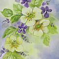Violets And Wild Roses by Becky West
