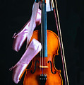 Violin And Pointe Shoes by Garry Gay