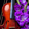 Violin And Purple Glads by Garry Gay