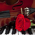 Violin And Rose On Piano by Garry Gay