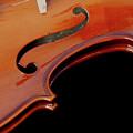 Violin by Elle Arden Walby