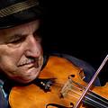 Violin Player by Todd Fox