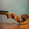 Violin Scroll by Benjamin Harte