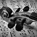 Violin Scroll On Sheet Music by Garry Gay
