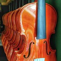 Violins For Sale by John Myers