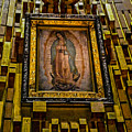 Virgen De Guadalupe 6 by Totto Ponce