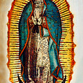 Virgen De Guadalupe by Bibi Rojas
