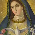 Virgen De La Paloma by Unknown
