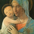 Virgin And Child 1495 by Mantegna Andrea