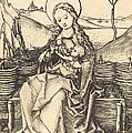 Virgin And Child On A Grassy Bench by Martin Schongauer