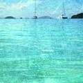 Virgin Islands Blues by Guy Crittenden