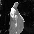 Virgin Mary In Black And White by Rob Hans