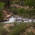 Virgin River Hike - 2  by Hany J