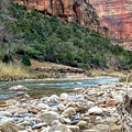Virgin River In Zion Canyon by Rincon Road Photography By Ben Petersen