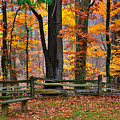 Virginia Country Roads - A Seat With A View - Autumn Colorfest No. 1 Near Mabry Mill - Floyd County by Michael Mazaika