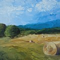 Virginia Hay Bales II by Donna Tuten