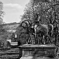 Viscount Gough On Horseback. by Paul Cullen