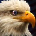 Vision Of Freedom II by Ricky Barnard