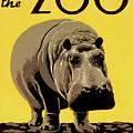 Visit The Zoo Philadelphia by Aapshop
