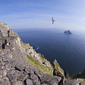 Visitors Admire Celtic Monastery, Skellig Michael, Looking To Little Skellig, County Kerry, Ireland  by Peter Barritt