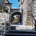 Viterbo Archway by Joan De Bot