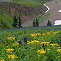 Vivid Colors Of The Colorado Alpine by Cascade Colors