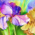 Voices Of Spring by Georgiana Romanovna