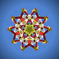 Voladores Kaleidoscope 1 by Chad Kroll