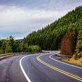 Volcanic Highway by Michael Scott