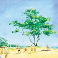 Volleyball Anyone by Ray Cole