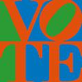 Vote by Linda Ruiz-Lozito