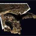 Vulture 3d by Donna Brown