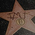 W C Fields Star by Rob Hans