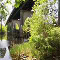 Waccamaw Memorial Bridge By The Riverbank In May by MM Anderson