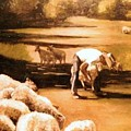 Wade With Sheep by Helen Hickey