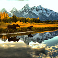 Wading Through The Tetons by Adam Jewell