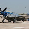 Wafb 09 P-51 Mustang 3 - Darling Of The Sky by David Dunham