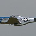 Wafb 09 P51 Mustang 1 - Darling Of The Sky by David Dunham