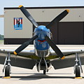 Wafb 09 P51 Mustang 2 - Darling Of The Sky by David Dunham