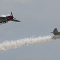 Wafb 09 Yak 52 Aerostar 6 by David Dunham