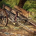 Wooden Cart  At Tanque Verde Ranch by Sandra Selle Rodriguez