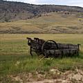 Wagon Ho by Marty Koch